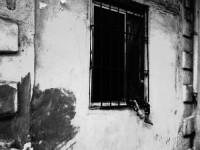http://www.aixpoz.com/sites/bmanoukian/medias/images/galerie_10/BurjHamud_BM__20_.jpg