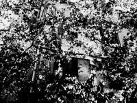 http://www.aixpoz.com/sites/bmanoukian/medias/images/galerie_10/BurjHamud_BM__4_.jpg