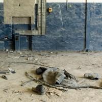 http://www.aixpoz.com/sites/bmanoukian/medias/images/galerie_4/L1033489cop1.jpg