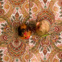 http://www.aixpoz.com/sites/bmanoukian/medias/images/galerie_9/Brigitte_Manoukian_13.jpg