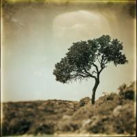 http://www.aixpoz.com/sites/jpage/medias/images/galerie_accueil/JAC_4424_Nik_01.JPG