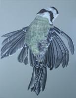 http://www.aixpoz.com/sites/nidrouge/medias/images/galerie_4/Oiseau_N__9.2010.jpg