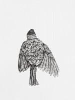 http://www.aixpoz.com/sites/nidrouge/medias/images/galerie_41/Oiseau17_serie3SITE.2016.jpg