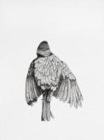 http://www.aixpoz.com/sites/nidrouge/medias/images/galerie_41/Oiseau9_serie3SITE.2016.jpg